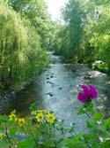 riviere la sarthe